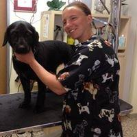 Hundepflege Doris Ploner