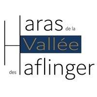 Haras de la Vallée des Haflinger