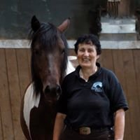Seminare und Pferde