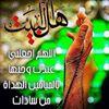 سفن النجاة محمد وال محمد