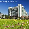 娜路彎大酒店 Formosan Naruwan Hotel