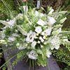 Gail Armytage Florist Cowbridge