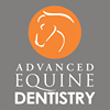 Advanced equine dentistry