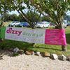 dizzy : support 4 diabetes