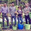 Ready-to-Grow Gardens