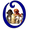 Owatonna Animal Shelter