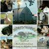 Northwoods Animal Rehabilitation Sanctuary & Adoption Center