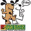 Bark Busters St Paul East Metro