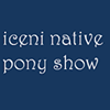 Iceni Native Pony