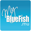 BlueFish-eMarketing.com