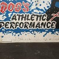 Dog's Athletic Performance