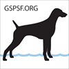 German Shorthaired Pointer Rescue of the SF Bay Area thumb