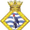 Seahawk Rugby Union