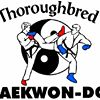 Thoroughbred Taekwon-Do, Canterbury