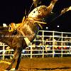 Branxton Rodeo