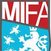 Manchester International Football Academy (MIFA)