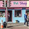 Marks pet shop