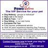 Paws Galore  - Dog Training, Dog Walking Bishop's Stortford