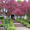Newaygo Bed and Breakfast