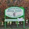 Beechcroft Animal Feeds