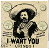 Gringos Vegan Kitchen
