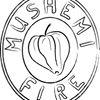 Mushemi Fire