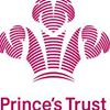 Prince's Trust Wolvcoll