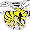 Wolverhampton Wasps Junior Rugby League