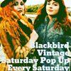 Blackbird Vintage Newry