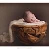 Samantha May Photography - Perth