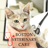 Boston Veterinary Care