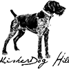 Whisker Dog Hill Photography