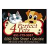 4 Perfect Pets