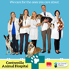 VCA Centreville Animal Hospital