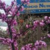 MOGO Nursery Statuary and Garden Artistry