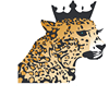 Rhinestone Leopard Boutique
