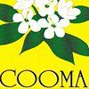 Cooma flower shop