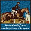 ECIR Group - Equine Cushings and Insulin Resistance