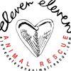 Eleven Eleven Animal Rescue