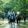 Cottonwood Creek Equestrian Center