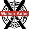 Jungen Walser Adler