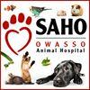 SAHO - Small Animal Hospital of Owasso