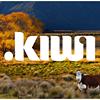 Dot Kiwi Ltd