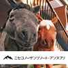 ニセコノーザンリゾート・アンヌプリ(Niseko Northern Resort,An'nupuri)