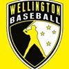 Wellington Baseball Association