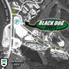 Black Dog Sports