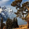 Teton Images : Artistic Images by Mike R. Jackson