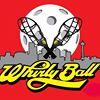 WhirlyBall Seattle