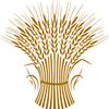 Collingwood Bread Company Inc.