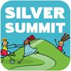 Silver Summit: A Playground for Everyone